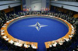 НАТО переживает фазу острого внутреннего кризиса