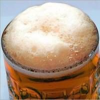 В Петербурге пиво можно будет не только пить, но и изучать