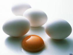 Для профилактики рака молочной железы следует ежедневно есть яйца