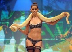 Модели и змеи на показе Triumph Lingerie в Сингапуре (фото)