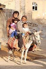 В 2008 году впервые в истории человечества число городских жителей сравняется с численностью сельского населения