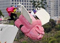 Фестиваль летательных аппаратов в Сиднее (фото)