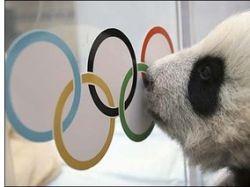 Террористы планировали захватить спортсменов на Олимпиаде