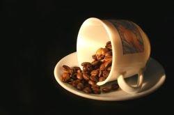 Лондонский магазин продает кофе из помета
