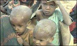 Мир без продовольствия: катастрофы можно избежать