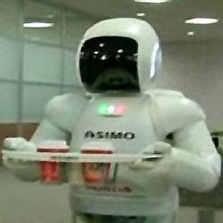 В ресторанах Германии официантами стали роботы