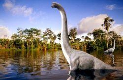 Океаническое дно помогло выяснить размер метеорита, убившего динозавров