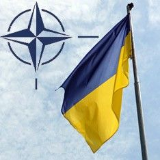 Украинцы уверены, что Североатлантический альянс и НАТО — разные организации