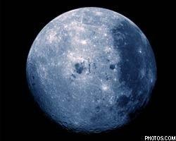 Ученые посадят на Луне цветы