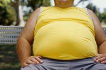 Большой живот повышает аппетит