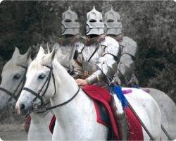 Семь способов отличить принца от белого коня после бутылки хересового  бренди