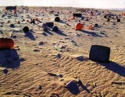 Побережья США – самые грязные в мире