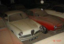Португальский землевладелец случайно нашел 180 старинных машин (фото)