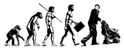 Американские ученые установили, что эволюционное движение не обязательно следует от простых структур к сложным