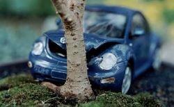 CrashBonsai - миниатюры, имитирующие столкновение автомобиля с деревом (фото)