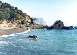 Черное море возникло в результате Всемирного потопа