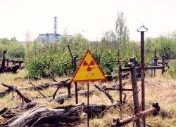 Чернобыльская катастрофа не привела к увеличению количества заболеваний, за исключением рака щитовидки