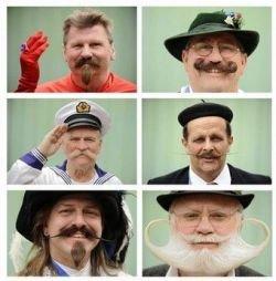 Международный чемпионат бород и усов в Баварии (фото)