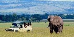 Безопасно ли ехать в Кению?