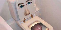 Художественное оформление туалетов - на выставке в Бельгии