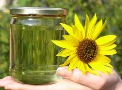 Биотопливо - причина продовольственного кризиса?