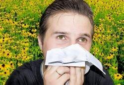Можно ли победить аллергию с помощью малых доз аллергенов?