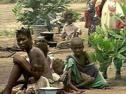 Если Африка голодает - значит, это кому-то нужно?