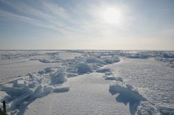 Россия будет приглядывать за Арктикой со спутников