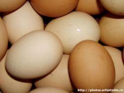Перед Пасхой народ скупает яйца, а милиция инструктирует священников