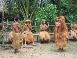 60 тысяч долларов - штраф за поездку на Амазонку без разрешения