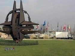 Постпредство России в НАТО подозревает, что серия нападений на дипломатов в Брюсселе - антироссийский заговор
