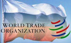 Доклад по вступлению РФ в ВТО согласован, несмотря на позицию Грузии
