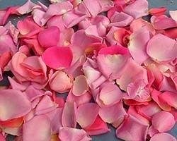 Создан искусственный материал со свойствами лепестков роз