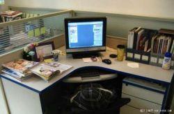 Наглядное пособие: как спрятаться в офисе? (фото)