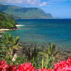 На Гавайях сплели самую длинную гирлянду из цветов