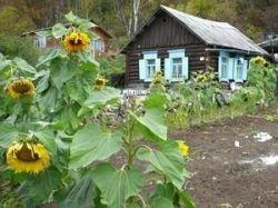 Почти у половины жителей российских городов есть дачи