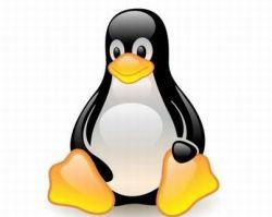 Негативное отношение к США идет на пользу Linux