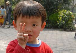 Китай во власти смертельного вируса: 8,5 тысяч жертв