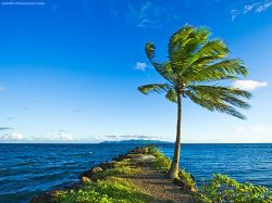 В Тихом океане готовится к открытию самый фантастический проект современной туриндустрии
