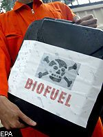 Безвредное биотопливо: разрабатываются новые способы получения автомобильного горючего