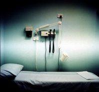 """Составлен \""""черный\"""" список тех, кому придется умереть во время пандемии птичьего гриппа"""