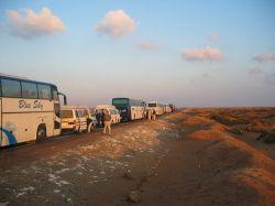 На туристические автобусы в Египте поставят ограничители скорости