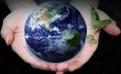 Сам себе эколог. Инструкция по спасению планеты