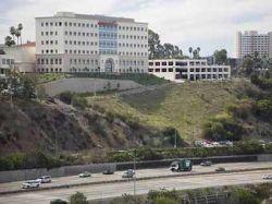 В Калифорнии раскрыта студенческая сеть наркоторговцев