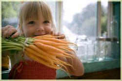 Почему вредно набрасываться на свежие овощи