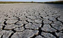 Женщины больше пострадают от глобального потепления
