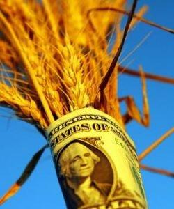 Мировой продовольственный кризис продолжится до 2015 года