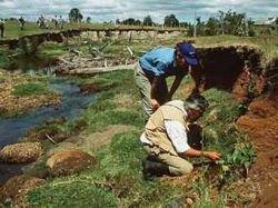 Чилийское палеолитическое поселение оказалось древнейшим в Америке