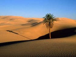 Ученые разгадали тайну Сахары