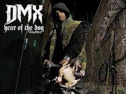 Рэпер DMX арестован за издевательства над собаками